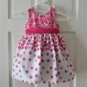 American Princess Special Occasion Toddler Dress